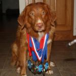 """Ma, take the picture already! These medals are getting heavy! And stop throwing that pen!!"" - Jake"